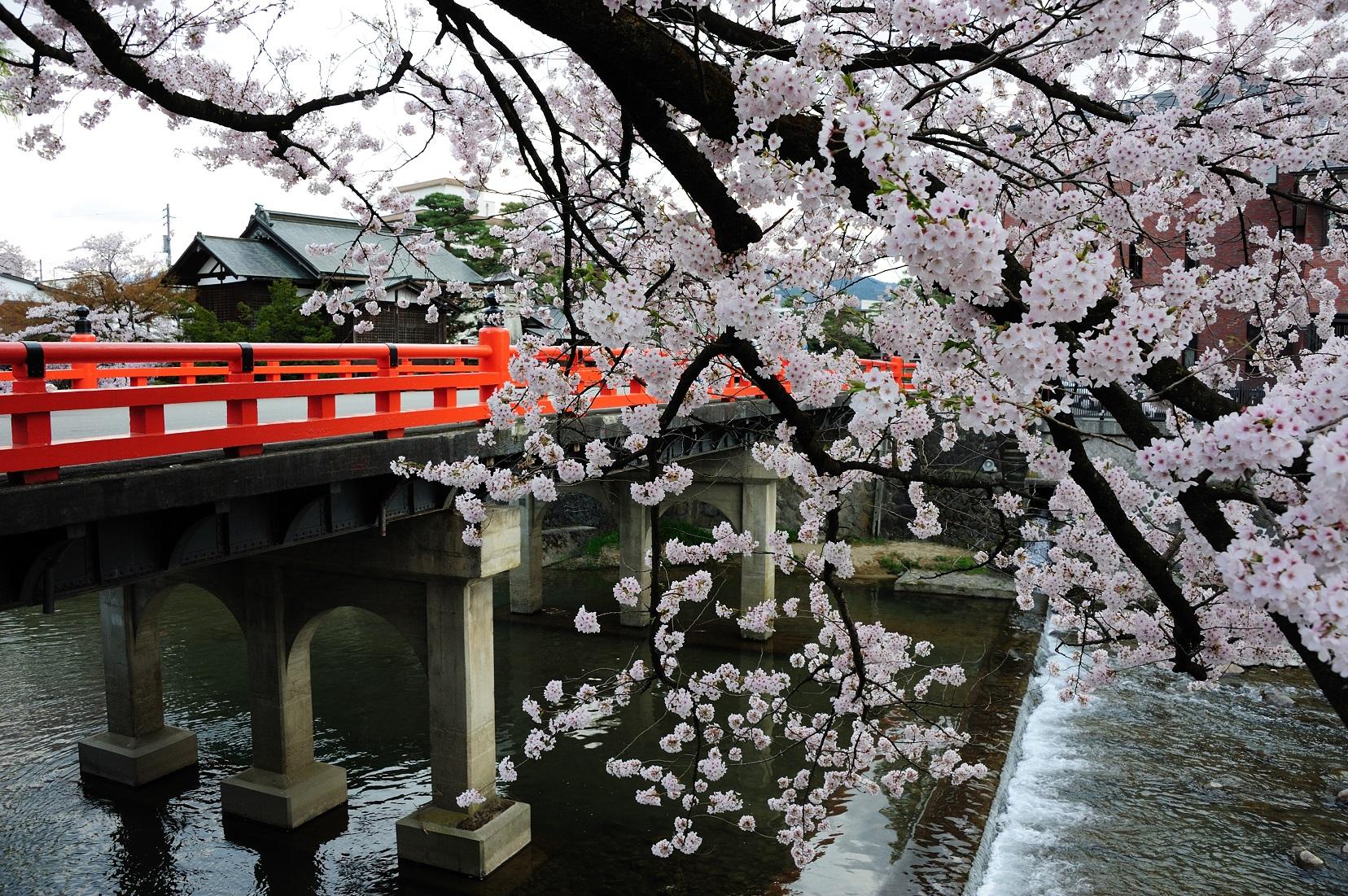 Nakabashi Bridge -Takayama