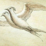 Hyoku: A lenda do pássaro de uma só asa