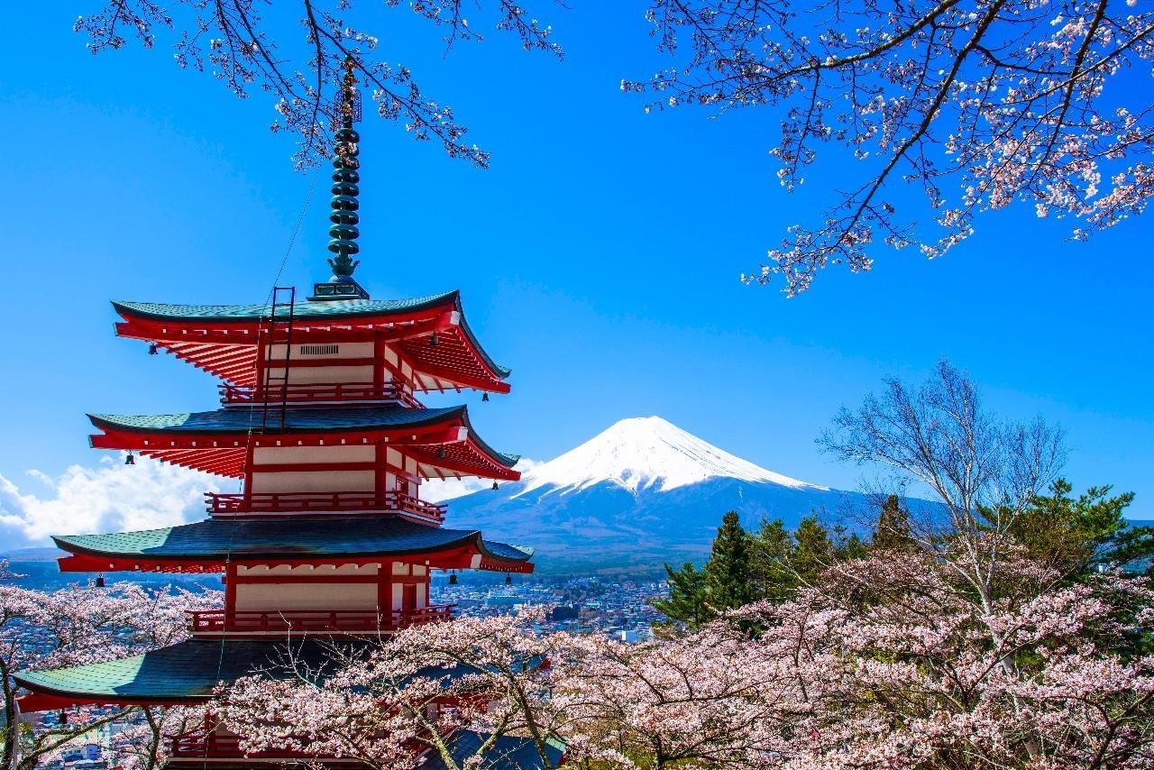 Maio Amarelo: como o Japão reduziu 80% das mortes no trânsito | Quatro Rodas